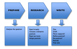 Professional essay writing proces