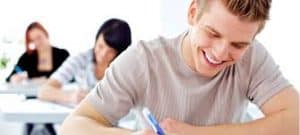 Professional Essay Writer Services